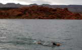 Ironman 70.3 St. George participants compete in the swim portion of the event in the waters of Sand Hollow Reservoir Saturday, May 7, 2016.